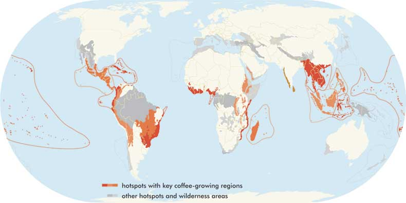 Geography of Coffee